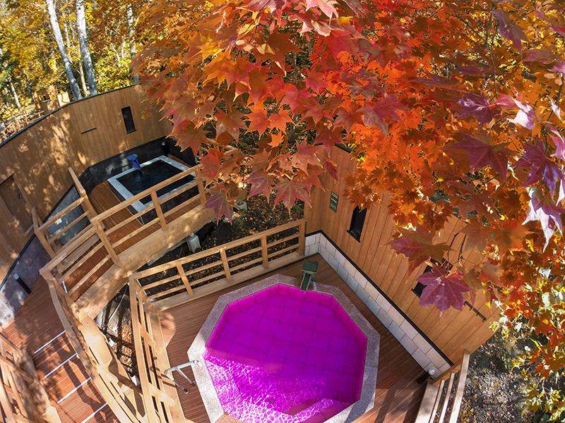 【森の散歩湯WOOD SPA】秋は、色とりどりの紅葉と露天風呂の両方をお楽しみいただけます。